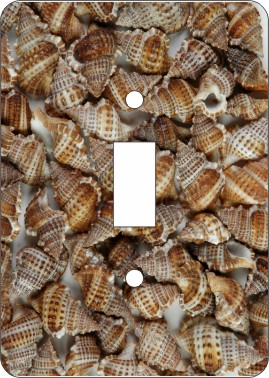 Brown Frog Sea Shell Switch Plate