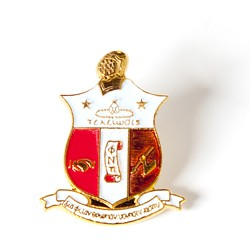 Kappa Alpha Psi Jewelry 3 D Color Shied Pin