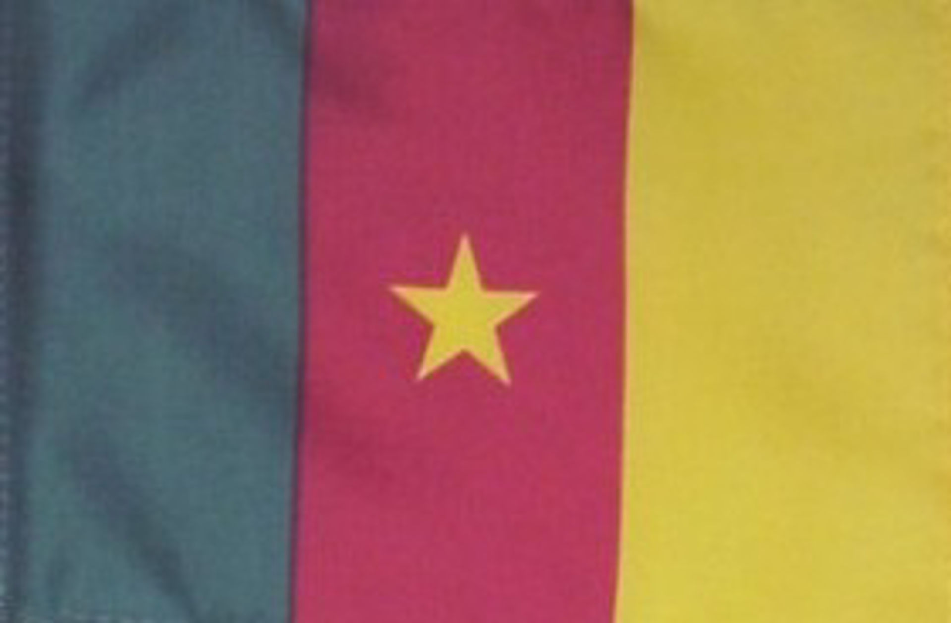 Flags Of Africa - Cameroon